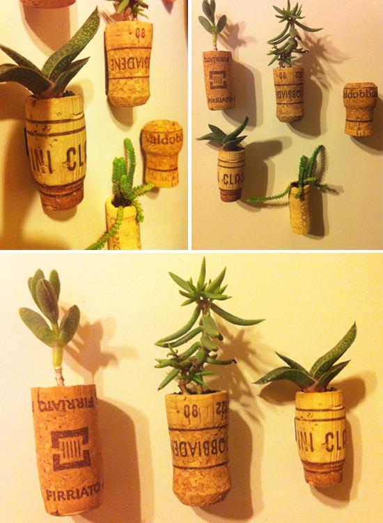 diy_magneti_piante grasse