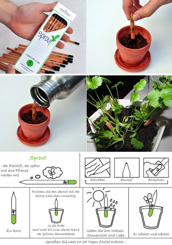 sprout_matita_pianta