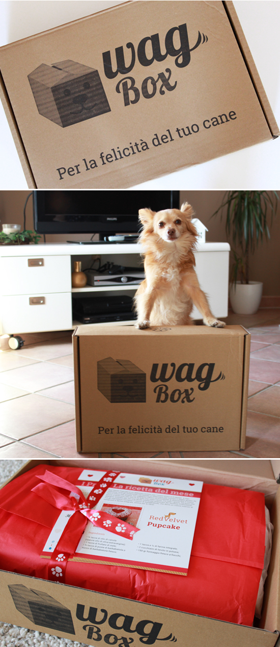 wag_box_cani