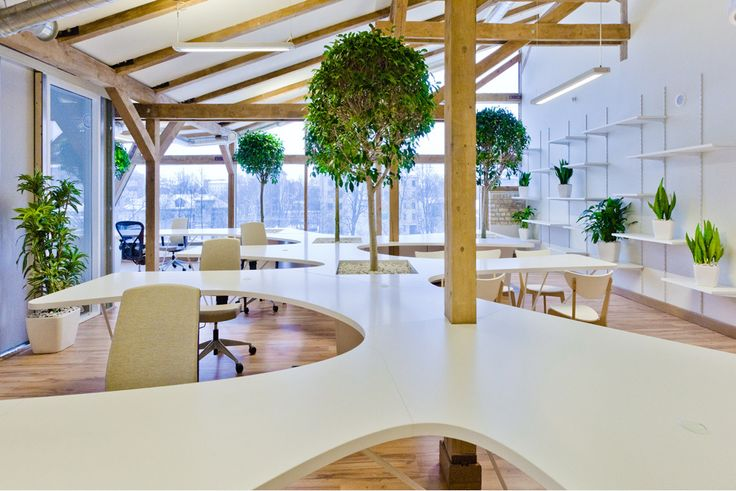 0fd3e34d4da18bdab6b6f90585665a86--greenhouse-interiors-green-office